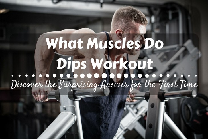 What Muscles Do Dips Workout