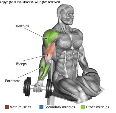 Upper Body Workout Routine For Men