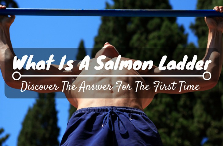 Salmon Ladder