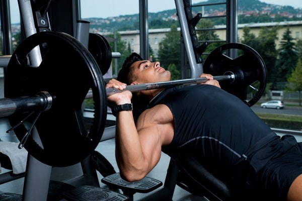 Male Muscle Growth - Bench Press